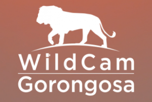 logo from WildCam Gorongosa on Facebook